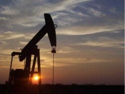 Türkler Irak'ta buldu: Zeytinyağı kalitesinde petrol