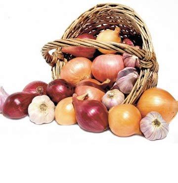 Antioksidan Soğan ve Sarımsak
