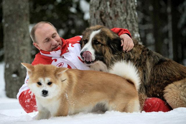 Vladimir Putin'in Köpekleri